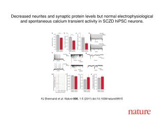 KJ Brennand  et al .  Nature 000 ,  1 - 5  (2011) doi:10.1038/nature09915