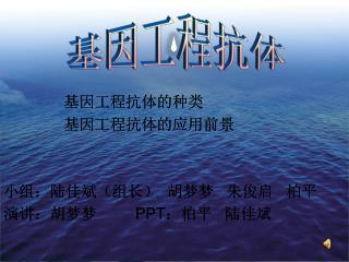 基因工程抗体的种类 基因工程抗体的应用前景 小组:陆佳斌(组长) 胡梦梦 朱俊启 柏平 演讲:胡梦梦 PPT :柏平 陆佳斌