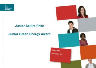 Junior Saltire Prize Junior Green Energy Award