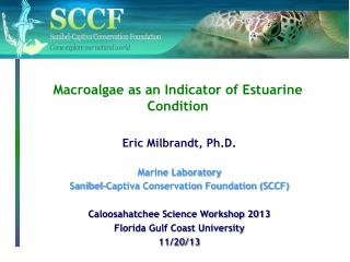 Macroalgae as an Indicator of Estuarine Condition