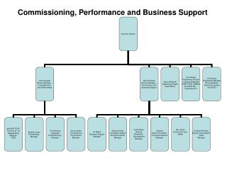 Commissioning, Performance and Business Support