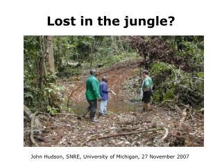 Lost in the jungle?