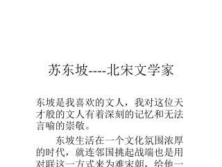 苏东坡 ---- 北宋文学家