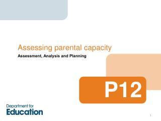 Assessing parental capacity
