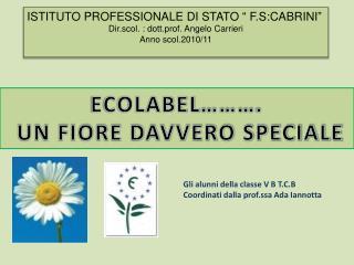 """ISTITUTO PROFESSIONALE DI STATO """" F.S:CABRINI"""" Dir.scol. : dott.prof. Angelo Carrieri"""