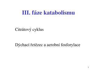 III. fáze katabolismu