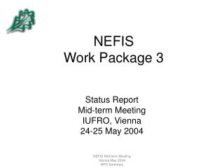 NEFIS  Work Package 3