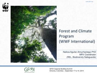 Forest and Climate Program (WWF International)