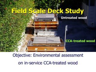 Field Scale Deck Study