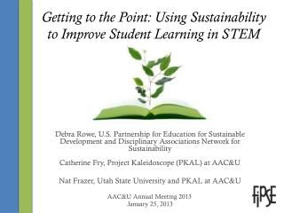 Getting to the Point: Using Sustainability to Improve Student Learning in STEM