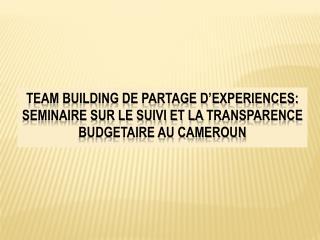 ETUDE DU FONCTIONNEMENT DES COMITES DE SUIVI DU BIP (BUDGET D'INVESTISSEMENT PUBLIC) AU CAMEROUN