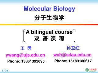 Molecular Biology 分子生物学
