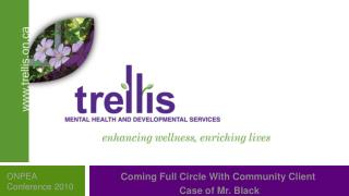 Trellis MENTAL HEALTH AND DEVELOPMENTAL SERVICE