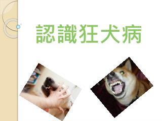 認識狂犬病