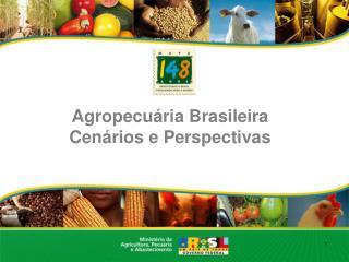 Agropecuária Brasileira Cenários e Perspectivas