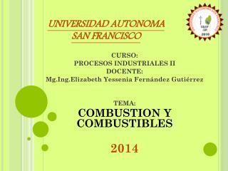 CURSO: PROCESOS INDUSTRIALES II DOCENTE: Mg.Ing.Elizabeth Yessenia Fernández Gutiérrez TEMA: