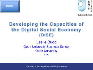 Developing the Capacities of the Digital Social Economy (D I SE)