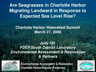 Are Seagrasses in Charlotte Harbor Migrating Landward in Response to Expected Sea Level Rise?