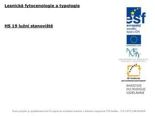 Lesnická fytocenologie a typologie HS 19 lužní stanoviště