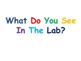 What Do You See In The Lab?