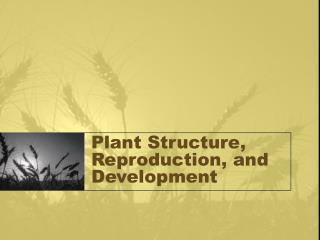 Plant Structure, Reproduction, and Development