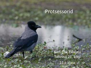 Protsessorid