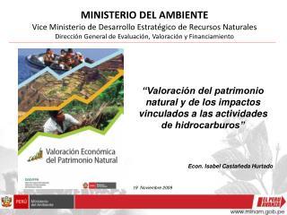 MINISTERIO DEL AMBIENTE Vice Ministerio de Desarrollo Estratégico de Recursos Naturales