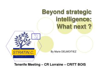 Beyond strategic intelligence: What next ?