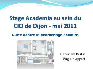 Stage Academia au sein du CIO de Dijon - mai 2011