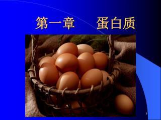 第一章 蛋白质