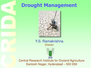 Y.S. Ramakrishna Director