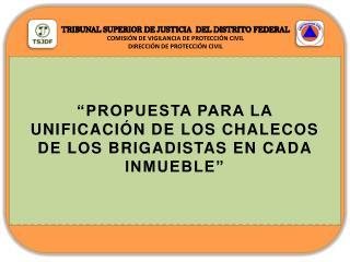 TRIBUNAL SUPERIOR DE JUSTICIA DEL DISTRITO FEDERAL COMISIÓN DE VIGILANCIA DE PROTECCIÓN CIVIL