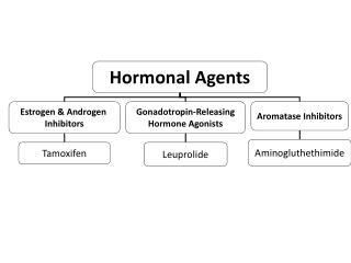 Hormonal Agents