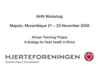 AHN Workshop  Maputo, Mozambique 21 – 23 November 2008