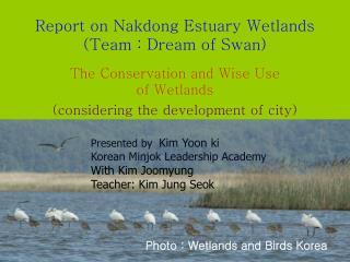 Photo : Wetlands and Birds Korea
