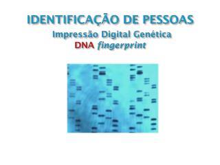 IDENTIFICAÇÃO DE PESSOAS Impressão  Digital  Genética DNA fingerprint