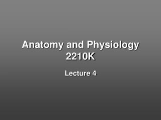 Anatomy and Physiology 2210K