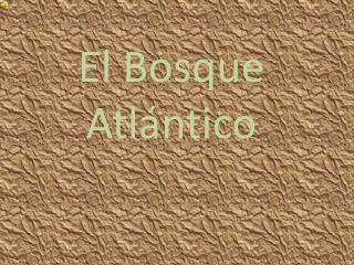 El Bosque Atlántico