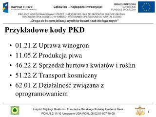 Przykładowe kody PKD