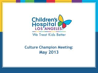 Culture Champion Meeting: May 2013