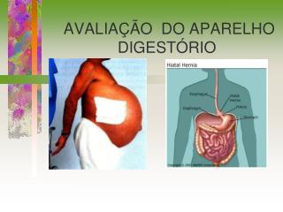 AVALIAÇÃO DO APARELHO DIGESTÓRIO