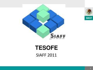 TESOFE SIAFF 2011