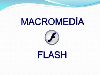 MACROMEDİA  FLASH