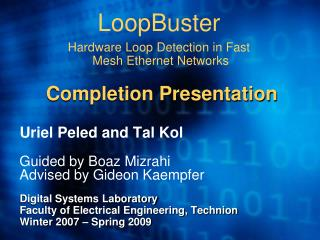 LoopBuster Hardware Loop Detection in Fast Mesh Ethernet Networks