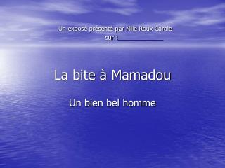 La bite à Mamadou