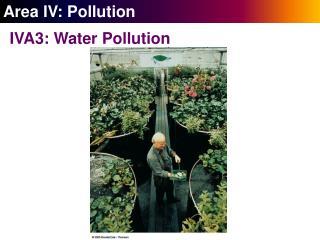 Area IV: Pollution