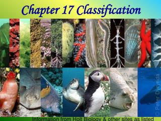 Chapter 17 Classification
