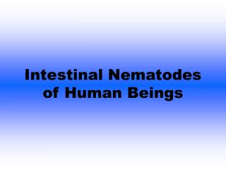 Intestinal Nematodes of Human Beings
