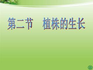 第二节 植株的生长
