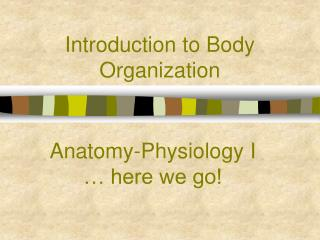 Introduction to Body Organization